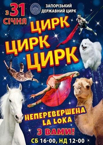 Цирк Запорожье. Цирк цирк цирк